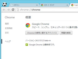 「Google Chrome」v24.0.1312.5 beta-m