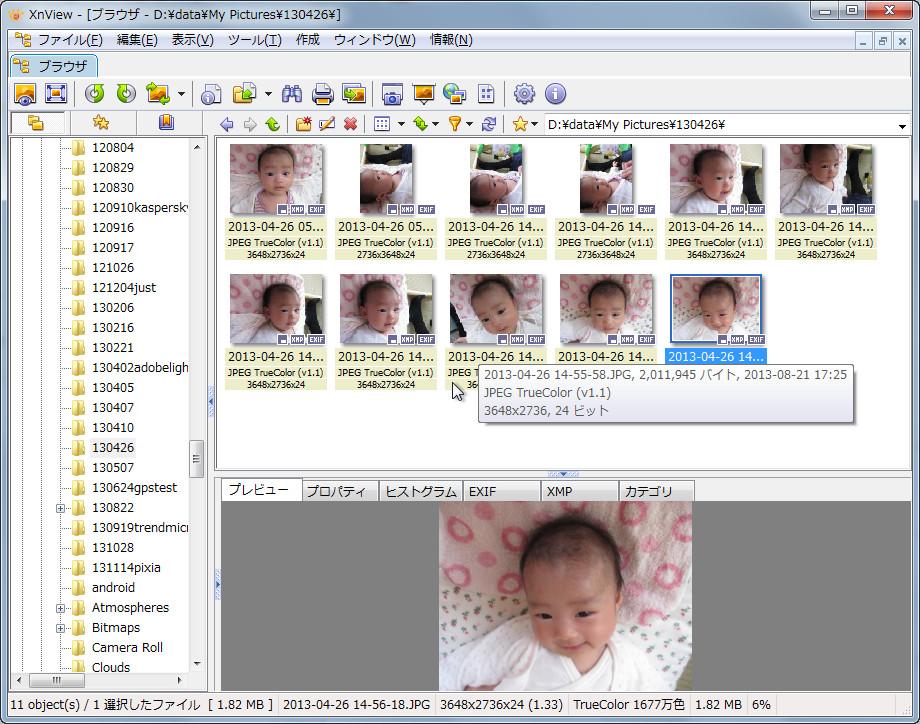 XnView」エクスプローラー型画像ビューワー - 窓の杜